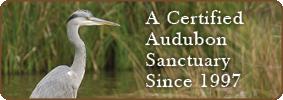 Audubon Sanctuary
