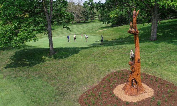 Golf Course Transforms Dying White Oak Tree Into New Sculpture
